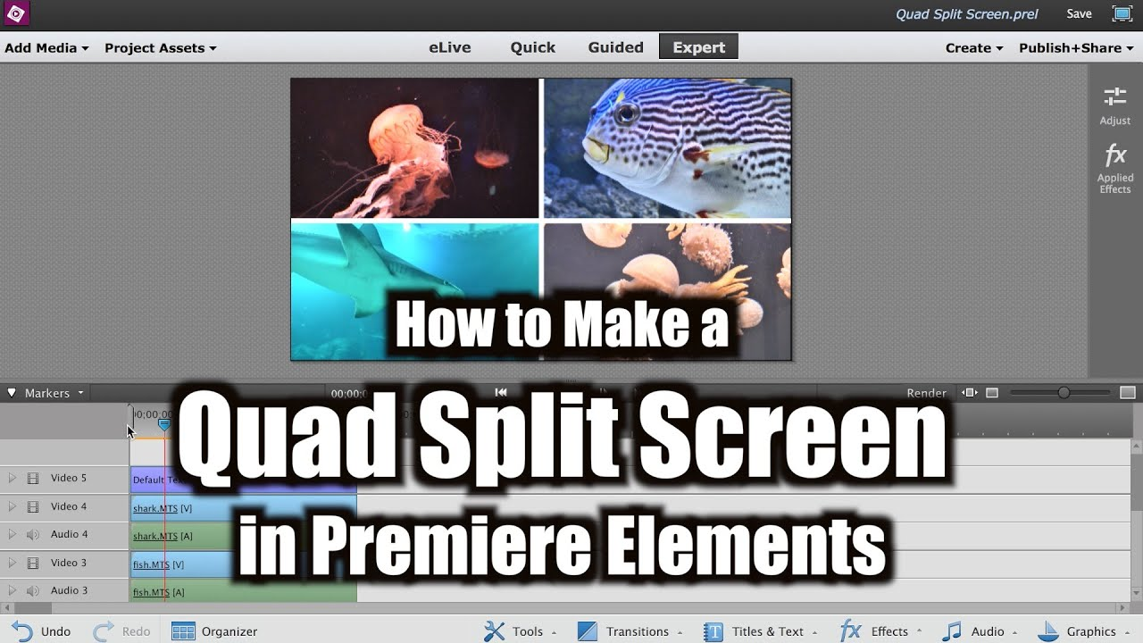 adobe premiere elements 10 manual download pdf