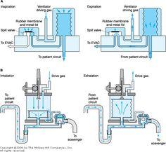 hamilton g5 ventilator user manual