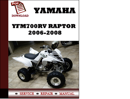 yamaha raptor 12 volt manual