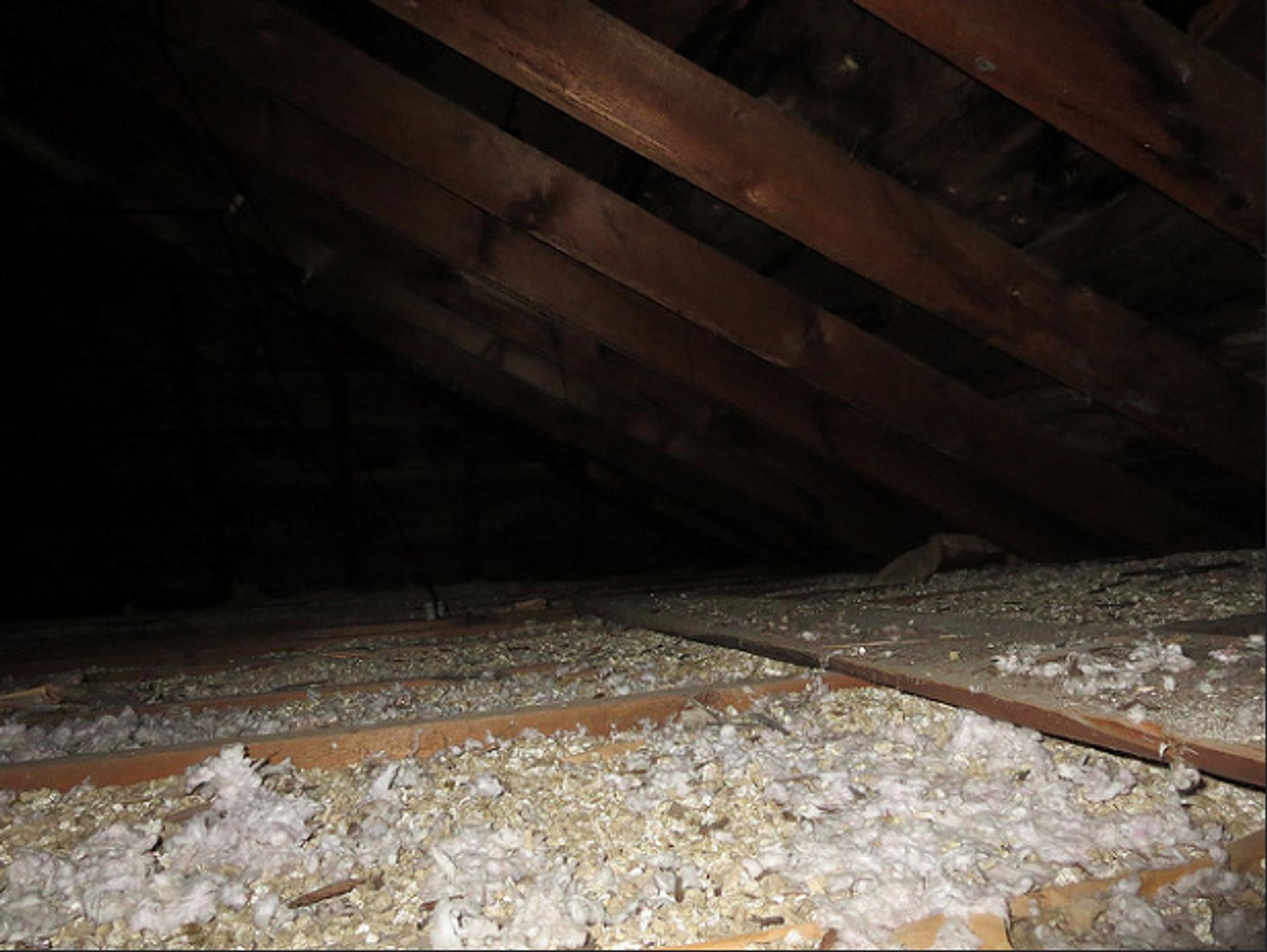 alberta asbestos abatement manual 2012