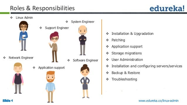 roles and responsibilities of manual test engineer